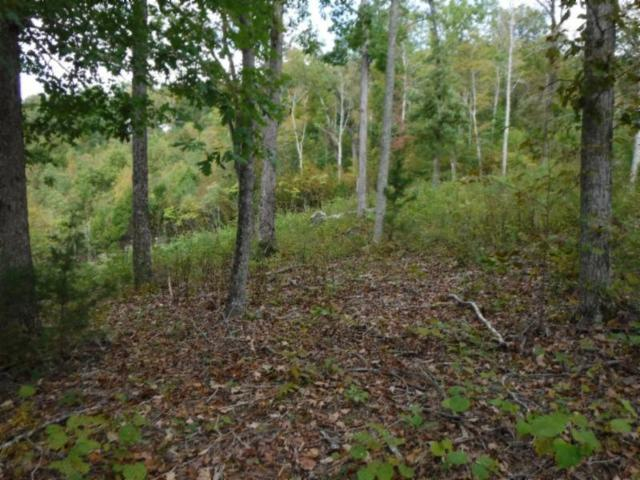 1.54ac Mitchell Creek Point, Allons, TN 38541 (#1058784) :: Shannon Foster Boline Group