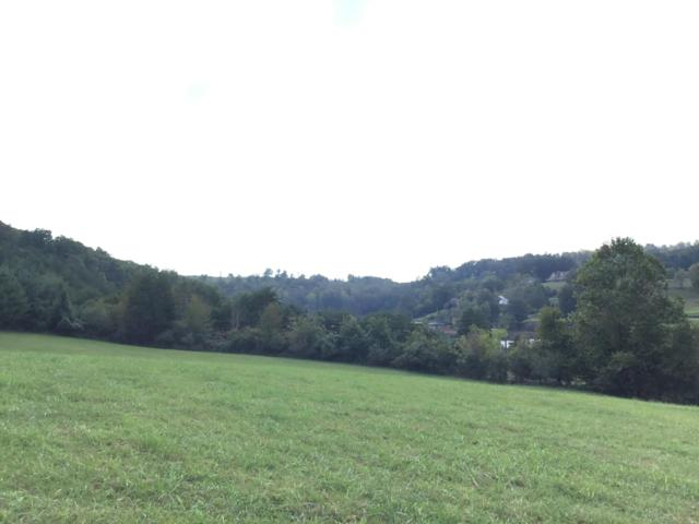 Lot 17 Deerfield Lane, LaFollette, TN 37766 (#1058923) :: Venture Real Estate Services, Inc.