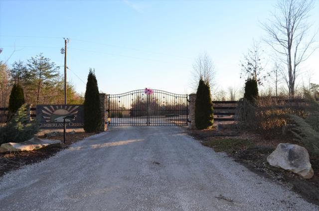 Soak Creek Lane, Grandview, TN 37337 (#1059022) :: CENTURY 21 Legacy