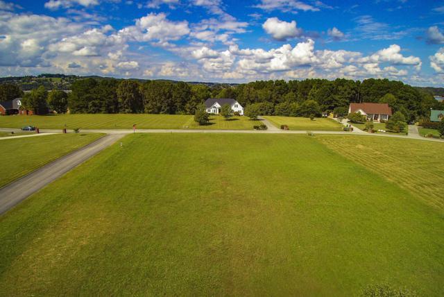 Big Oak Drive, Dandridge, TN 37725 (#1059059) :: Shannon Foster Boline Group