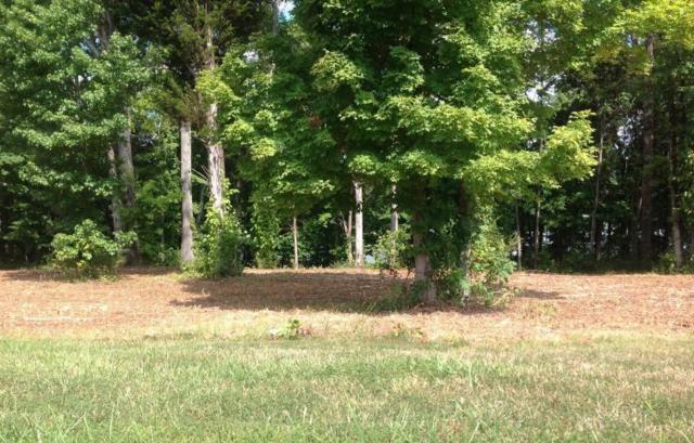 Falcon Trail Lot 33 Tr, Vonore, TN 37885 (#1059085) :: Catrina Foster Group