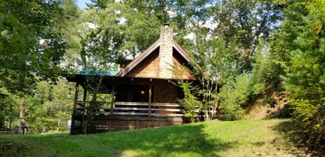 2815 River Rd, Tellico Plains, TN 37385 (#1059095) :: Realty Executives