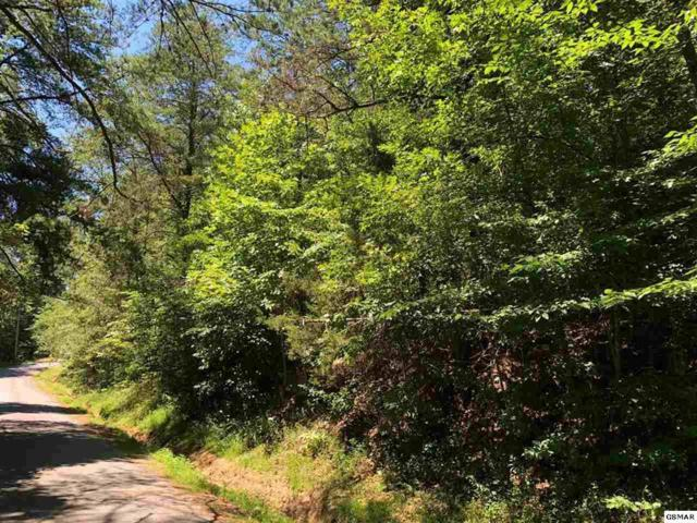 Lot 57 Cove Hollow Rd, Cosby, TN 37722 (#1059151) :: Venture Real Estate Services, Inc.