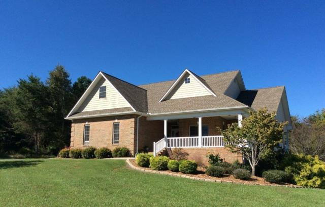 502 Gohi Tr, Vonore, TN 37885 (#1059153) :: Catrina Foster Group