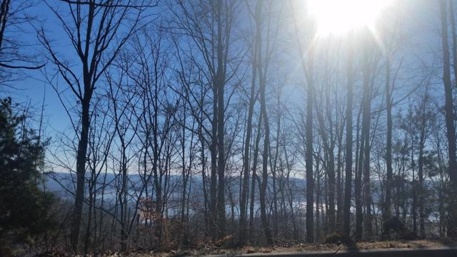 Lot 216 Harbor View, Mooresburg, TN 37811 (#1059321) :: Billy Houston Group