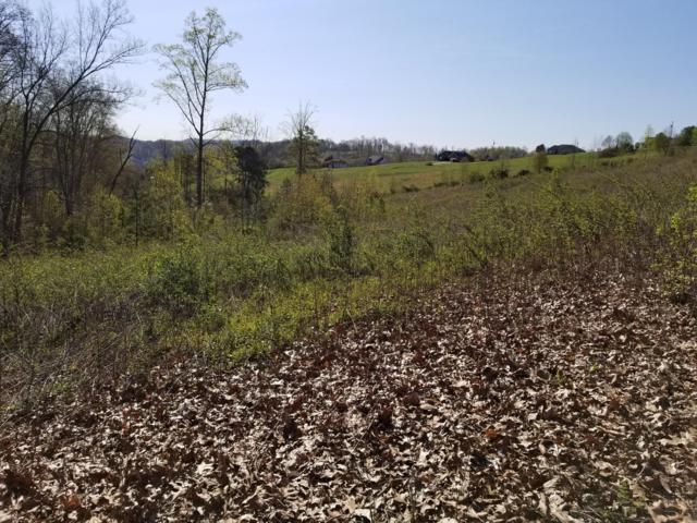 Lot 28 Melissa Lane, New Tazewell, TN 37825 (#1059331) :: Shannon Foster Boline Group