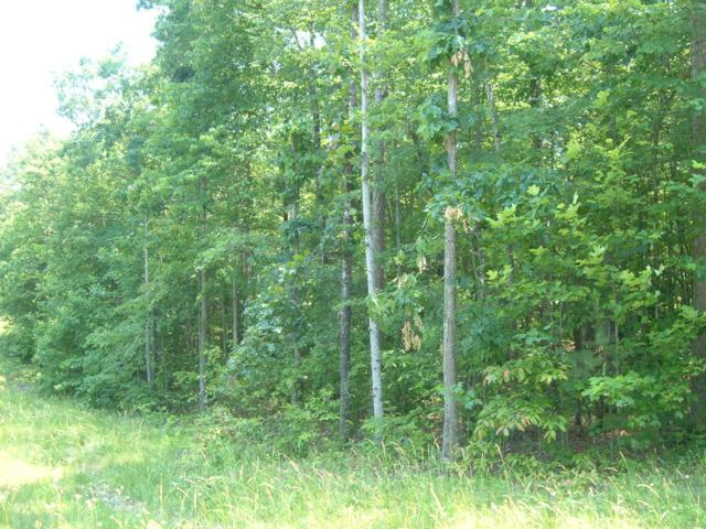 Indian Park Rd, Monterey, TN 38574 (#1059369) :: Shannon Foster Boline Group