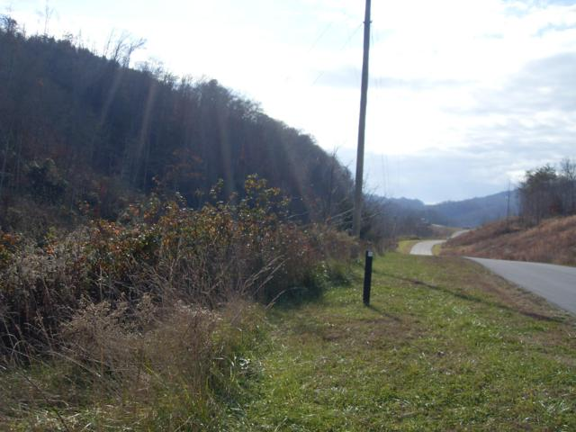Lot  68 Marina Landing Rd, Tazewell, TN 37879 (#1059444) :: Billy Houston Group