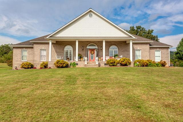 8315 Clapps Chapel Rd, Corryton, TN 37721 (#1059448) :: Shannon Foster Boline Group