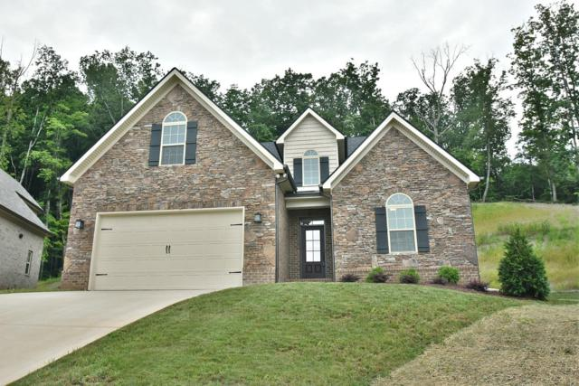 1674 Sugarfield Lane, Knoxville, TN 37932 (#1059453) :: Catrina Foster Group