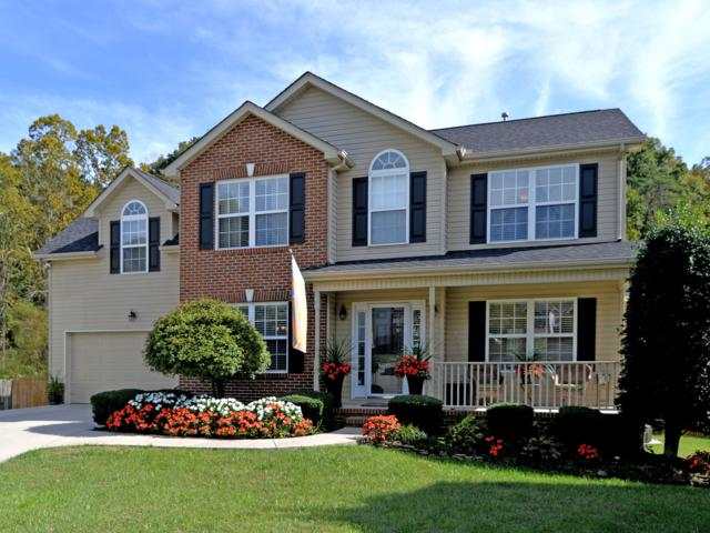 3301 Branch Hill Lane, Knoxville, TN 37931 (#1059589) :: Catrina Foster Group