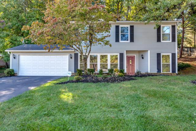 1106 Viking Drive, Knoxville, TN 37932 (#1059606) :: Catrina Foster Group
