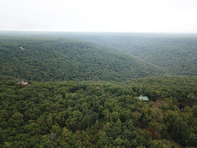 Cumberland Cove Rd #9, Monterey, TN 38574 (#1059680) :: Shannon Foster Boline Group