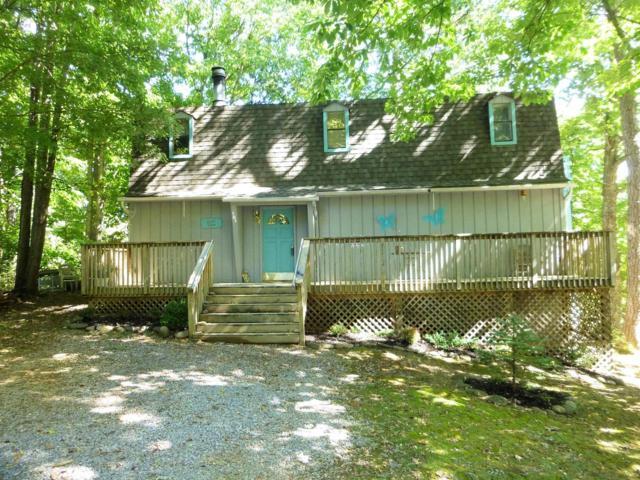 904 Echo Place, Gatlinburg, TN 37738 (#1059693) :: Billy Houston Group