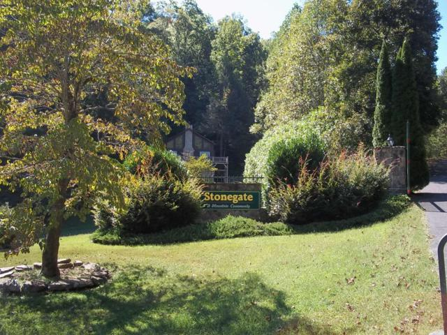 Stonegate Way Lot 57, Townsend, TN 37882 (#1059701) :: Billy Houston Group