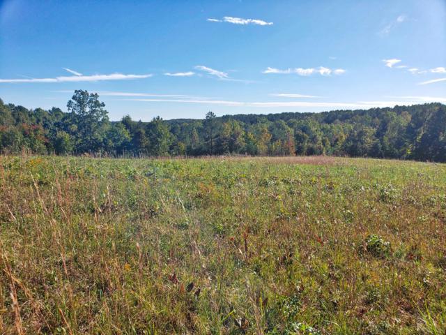 Lot 15 Nichol Creek Drive, Jamestown, TN 38556 (#1059741) :: CENTURY 21 Legacy