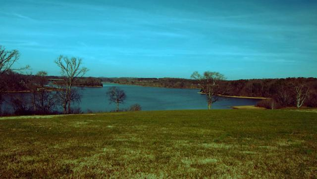Lot 7 Thunder Rd, Vonore, TN 37885 (#1059749) :: Catrina Foster Group