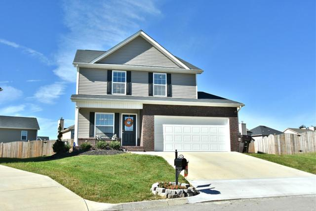 2209 Clover Vine Rd, Knoxville, TN 37931 (#1059781) :: Catrina Foster Group