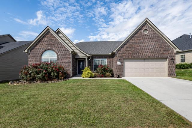 1739 Avashire Lane, Knoxville, TN 37931 (#1059787) :: Catrina Foster Group