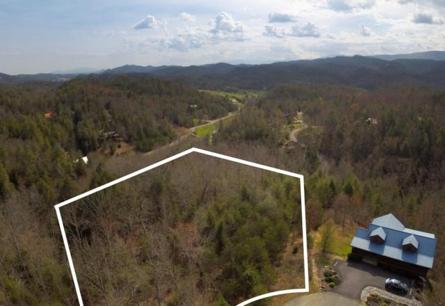 Cedar Falls Way Lot 40, Sevierville, TN 37862 (#1059823) :: Billy Houston Group
