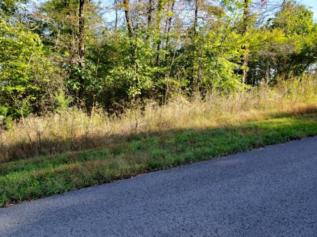 Lot 854 Wildcat Hollow Rd, New Tazewell, TN 37825 (#1060030) :: Shannon Foster Boline Group