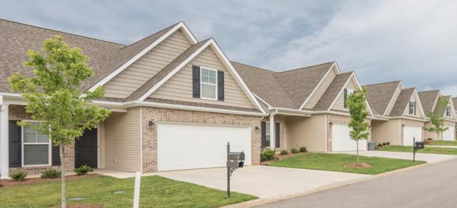 329 Franklin Meadows Way, Seymour, TN 37865 (#1060167) :: SMOKY's Real Estate LLC