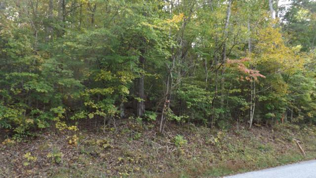 Lake Lane, New Tazewell, TN 37825 (#1060236) :: CENTURY 21 Legacy