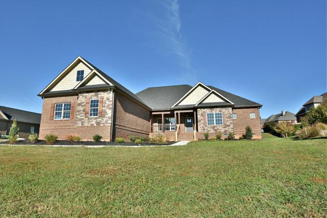 3319 Bridgewater, Maryville, TN 37804 (#1060432) :: Billy Houston Group