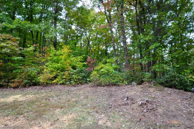 Little Round Top Ln, Lot 12, Townsend, TN 37882 (#1060582) :: Billy Houston Group