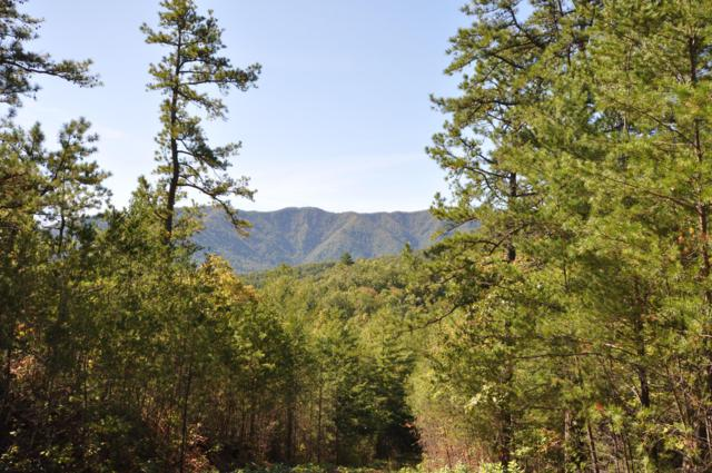 Stonegate Way, Lot 65, Townsend, TN 37882 (#1060604) :: Billy Houston Group