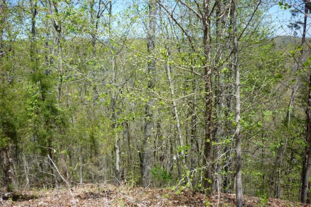 Lot 38 Eerie Point, Rockwood, TN 37854 (#1060641) :: CENTURY 21 Legacy