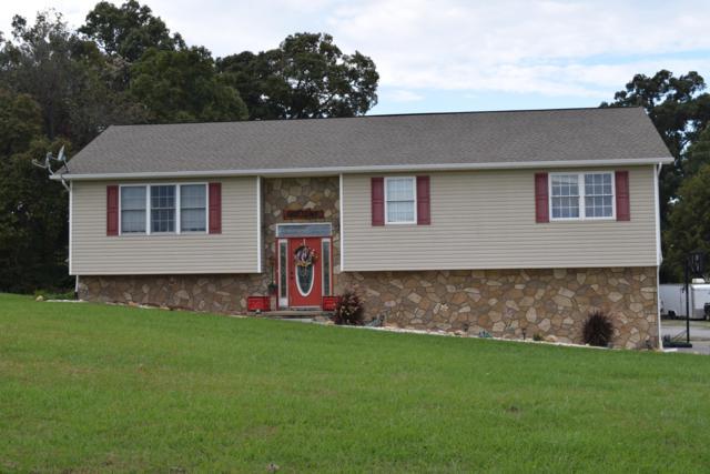 166 Golf View Blvd, Dandridge, TN 37725 (#1060644) :: Billy Houston Group