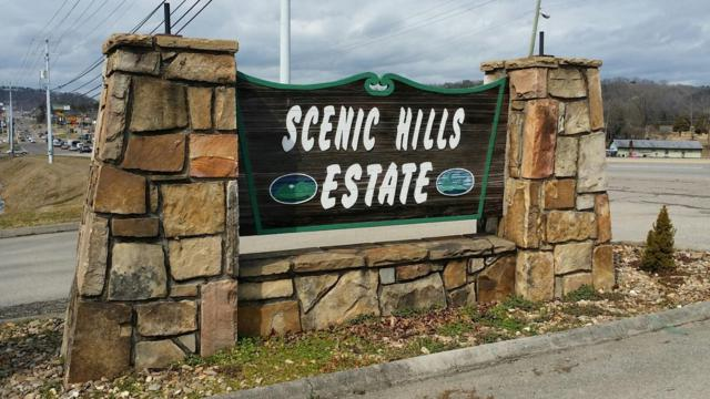Chapman View Drive, Seymour, TN 37865 (#1060706) :: Billy Houston Group