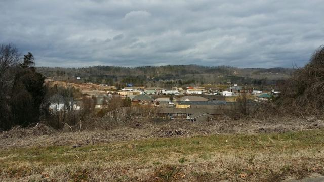 0 Chapman View Drive, Seymour, TN 37865 (#1060711) :: Billy Houston Group