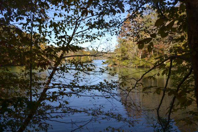 Youngs Creek Way, Kingston, TN 37763 (#1060769) :: CENTURY 21 Legacy