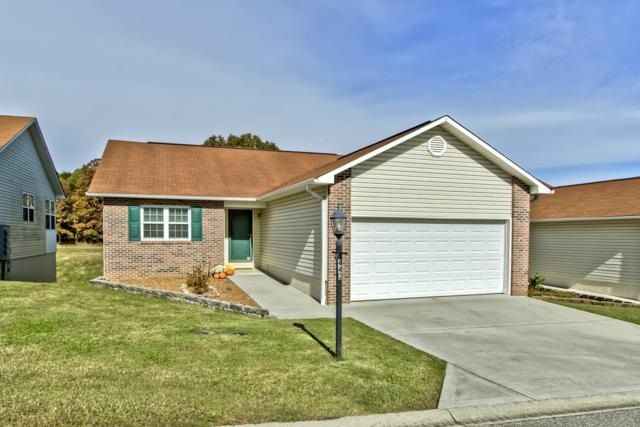 443 Executive Meadows Drive, Lenoir City, TN 37771 (#1060835) :: Shannon Foster Boline Group