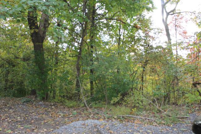 Lot 57 Smoky Mountain View Drive, Seymour, TN 37865 (#1060909) :: CENTURY 21 Legacy