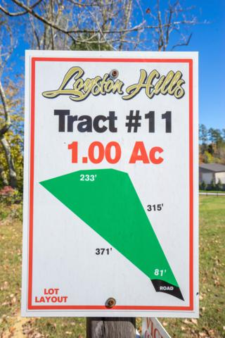 9210 White Lightning Way, Knoxville, TN 37938 (#1060922) :: Billy Houston Group