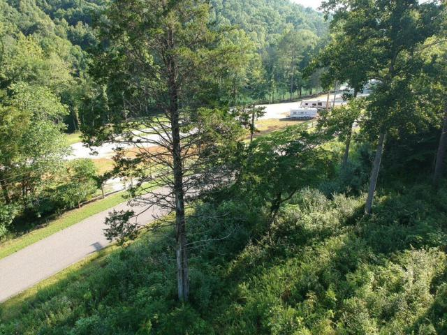 E Norris Point Rd, LaFollette, TN 37766 (#1061098) :: SMOKY's Real Estate LLC
