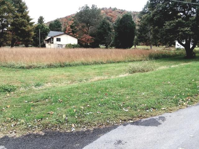 E Chestnut Hill Rd, Townsend, TN 37882 (#1061194) :: CENTURY 21 Legacy