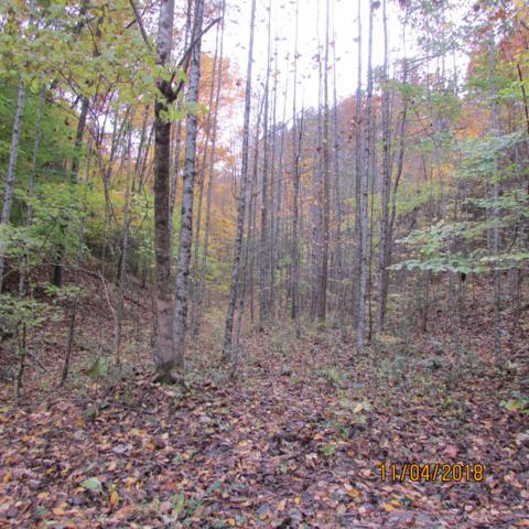 Fern Hollow Rd, Townsend, TN 37882 (#1061295) :: SMOKY's Real Estate LLC