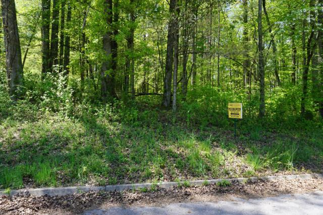 Dogwood Cove Drive, Spring City, TN 37381 (#1061302) :: Billy Houston Group