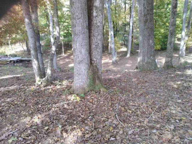 Lot 24 Spring Harbor Drive, Spring City, TN 37381 (#1061452) :: Realty Executives
