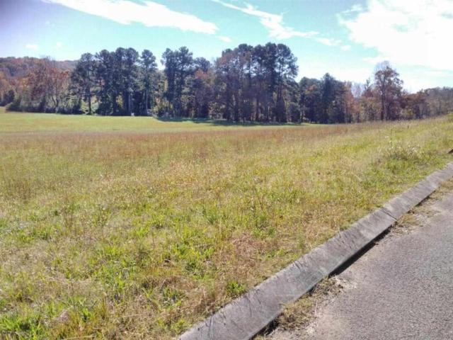 Lot 33 Spring Harbor Drive, Spring City, TN 37381 (#1061454) :: Realty Executives