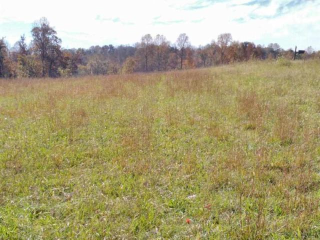 Lot 34 Spring Harbor Drive, Spring City, TN 37381 (#1061457) :: Realty Executives