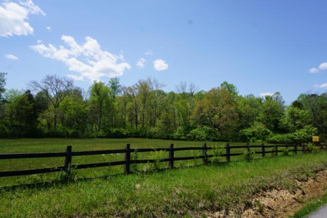 Rhea Springs Rd, Spring City, TN 37381 (#1061524) :: Billy Houston Group