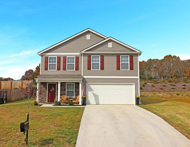 7145 Lawgiver Circle, Corryton, TN 37721 (#1061646) :: Shannon Foster Boline Group