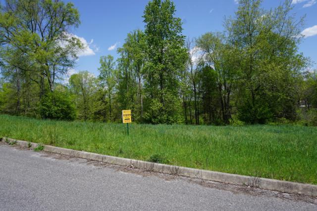 Dogwood Cove Drive, Spring City, TN 37381 (#1061689) :: Billy Houston Group