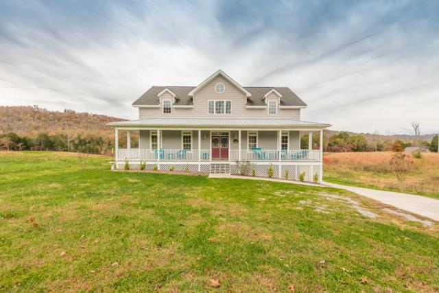 289 Old Leadmine Bend Rd Off Rd, Sharps Chapel, TN 37866 (#1061731) :: Billy Houston Group
