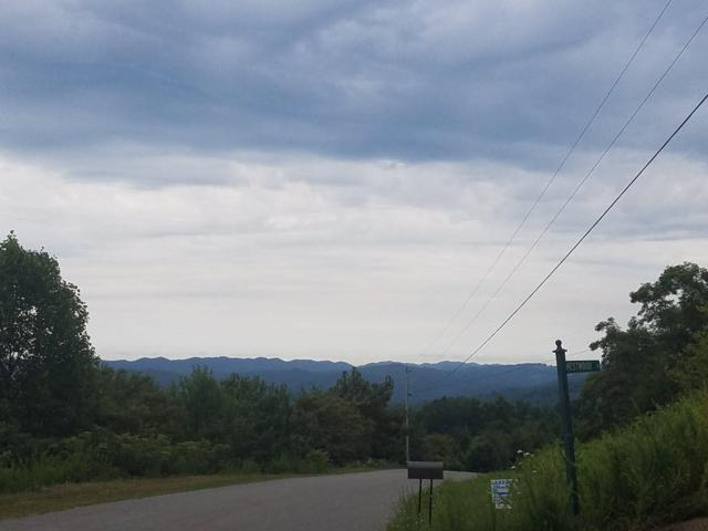 Lot 611 Chimney Rock Rd, New Tazewell, TN 37825 (#1061763) :: CENTURY 21 Legacy